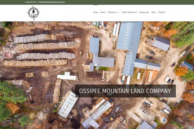 Ossipee Mountain Land Company